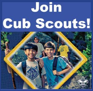Scout Me In!